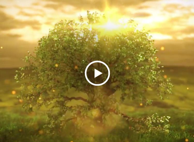 Kairali Corporate Video